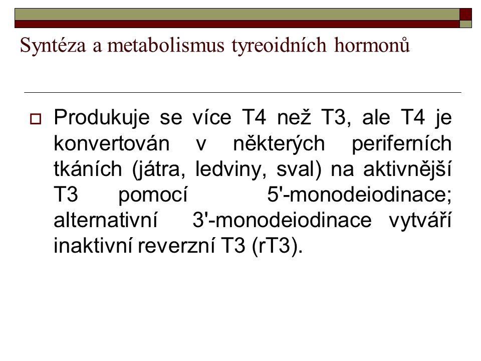 Syntéza a metabolismus tyreoidních hormonů