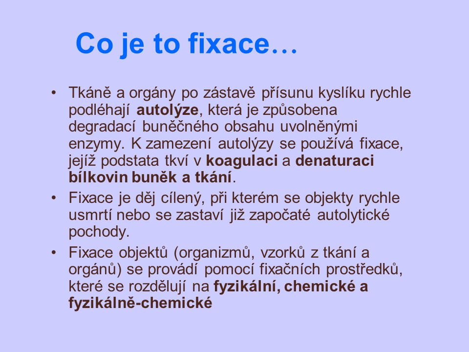 Co je to fixace…