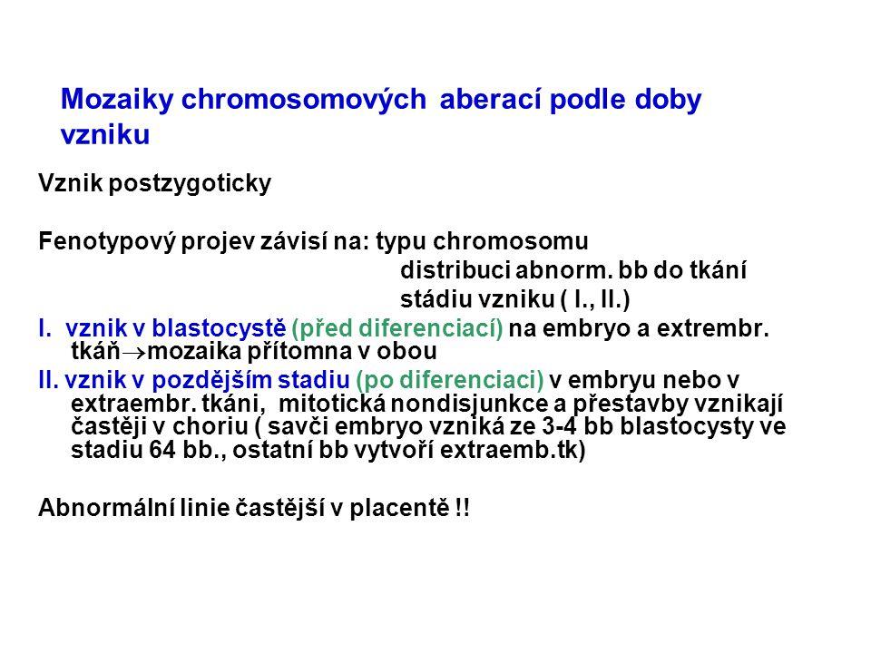 Mozaiky chromosomových aberací podle doby vzniku