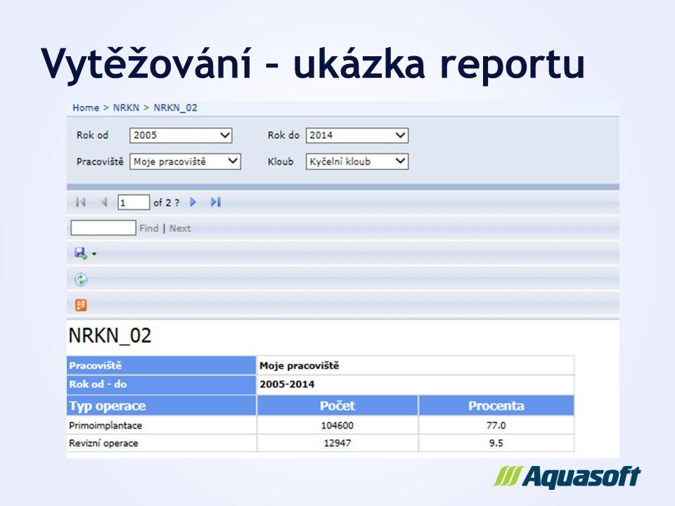 Vytěžování – ukázka reportu
