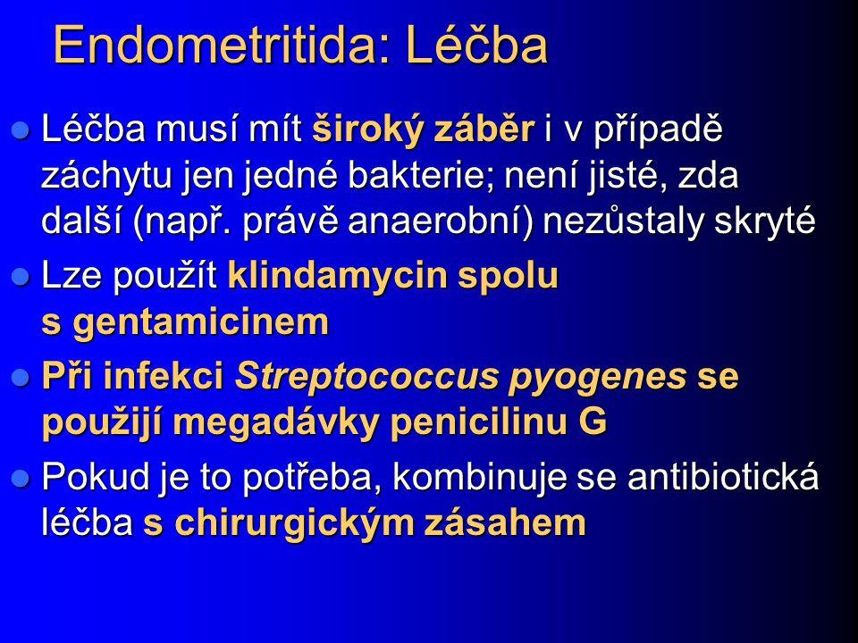 Endometritida: Léčba