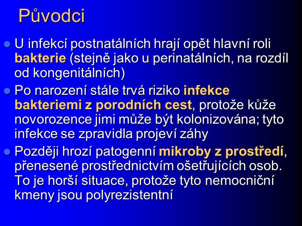 Původci U infekcí postnatálních hrají opět hlavní roli bakterie (stejně jako u perinatálních, na rozdíl od kongenitálních)