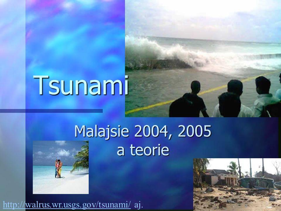 Tsunami Malajsie 2004, 2005 a teorie