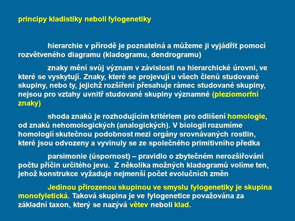 principy kladistiky neboli fylogenetiky