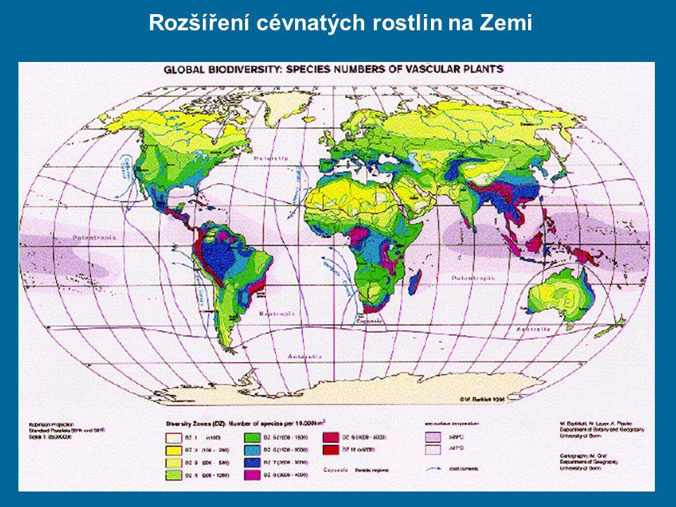 Rozšíření cévnatých rostlin na Zemi