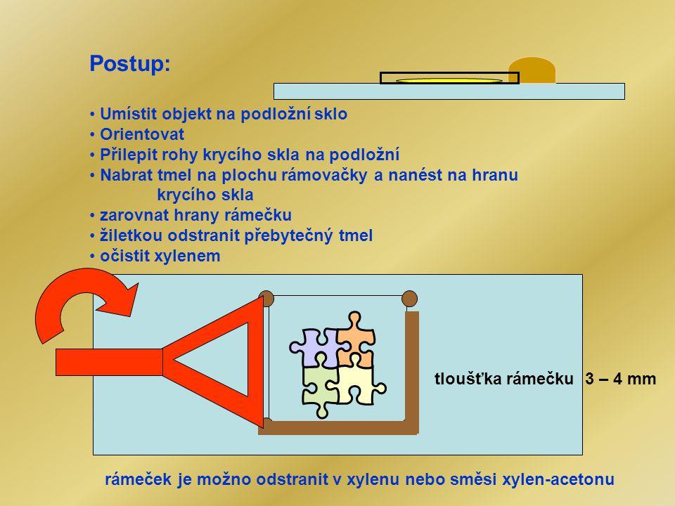 Postup: Umístit objekt na podložní sklo Orientovat