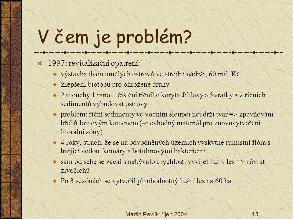 V čem je problém 1997: revitalizační opatření: