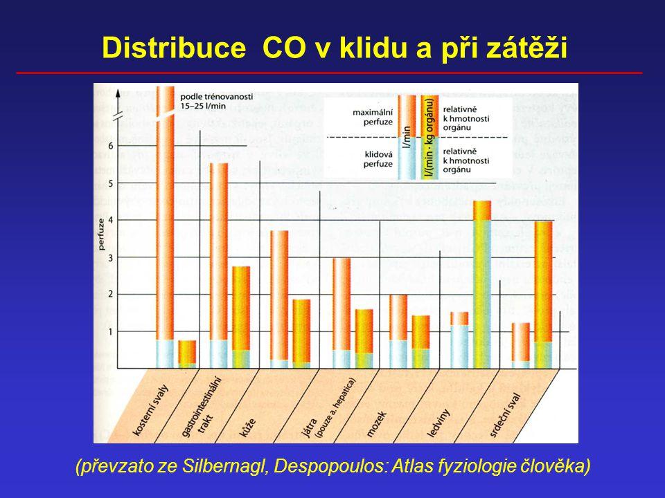 Distribuce CO v klidu a při zátěži