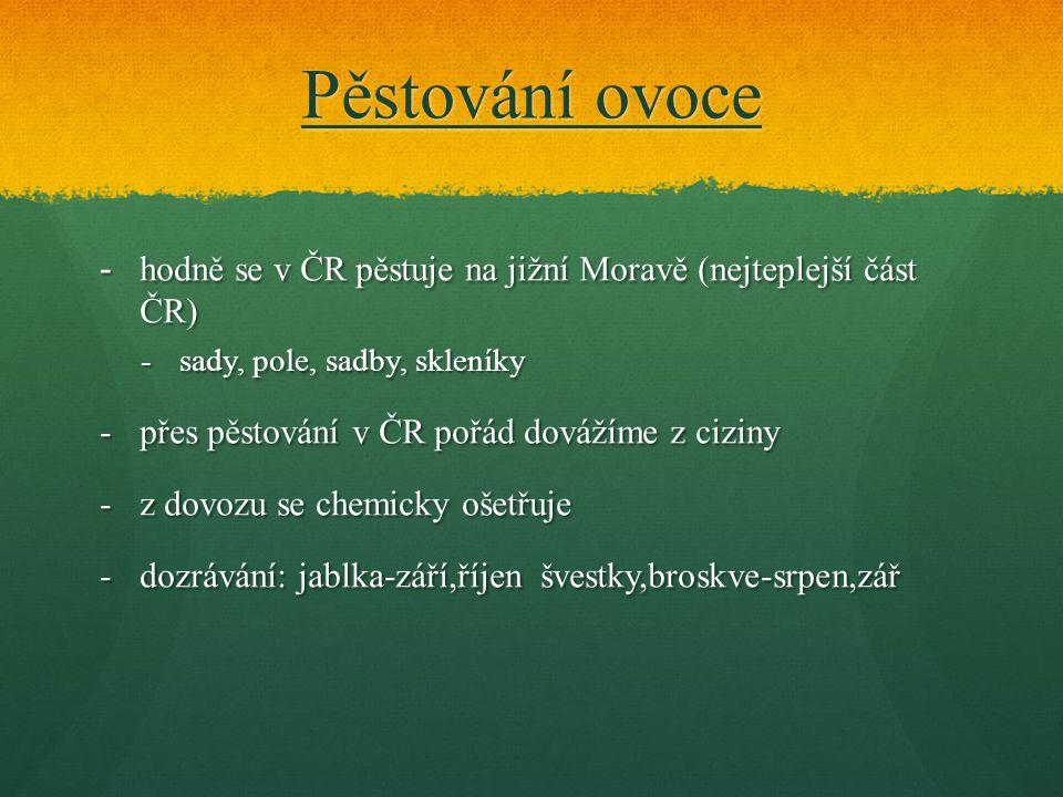 Pěstování ovoce hodně se v ČR pěstuje na jižní Moravě (nejteplejší část ČR) sady, pole, sadby, skleníky.