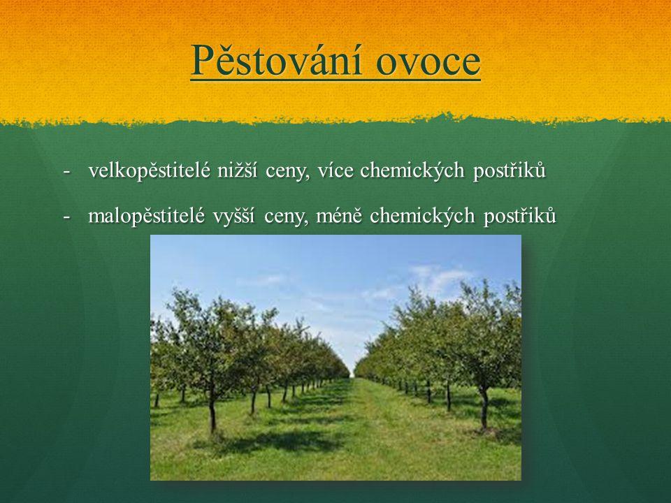 Pěstování ovoce velkopěstitelé nižší ceny, více chemických postřiků