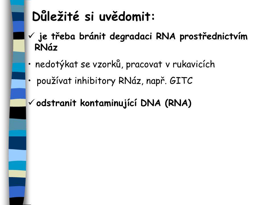 Důležité si uvědomit: je třeba bránit degradaci RNA prostřednictvím RNáz. nedotýkat se vzorků, pracovat v rukavicích.