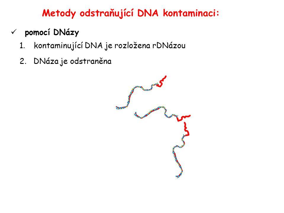 Metody odstraňující DNA kontaminaci: