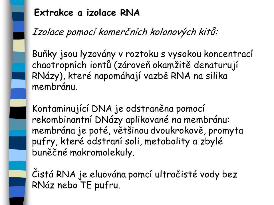 Extrakce a izolace RNA Izolace pomocí komerčních kolonových kitů: