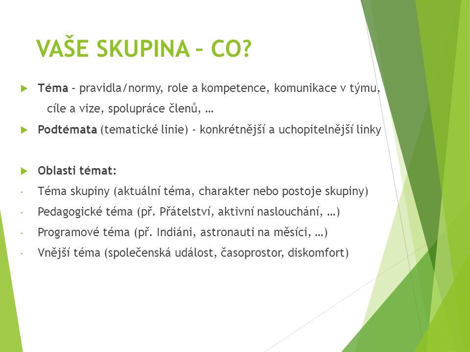 VAŠE SKUPINA – CO Téma – pravidla/normy, role a kompetence, komunikace v týmu, cíle a vize, spolupráce členů, …