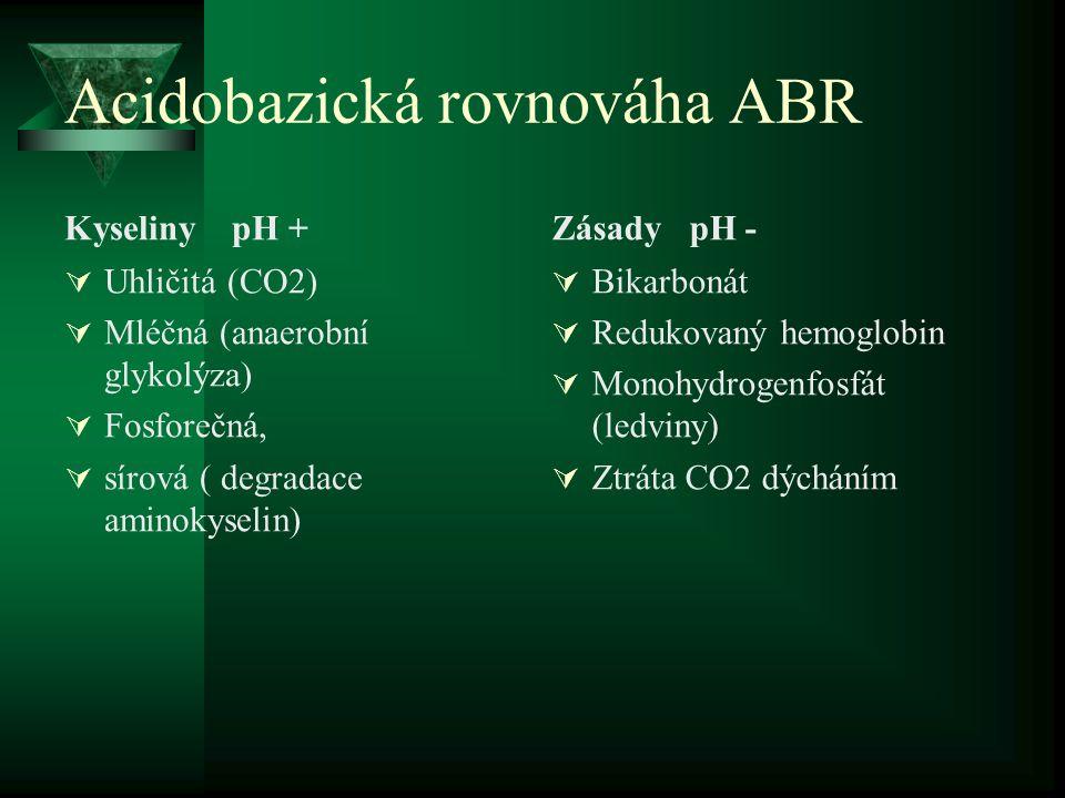 Acidobazická rovnováha ABR