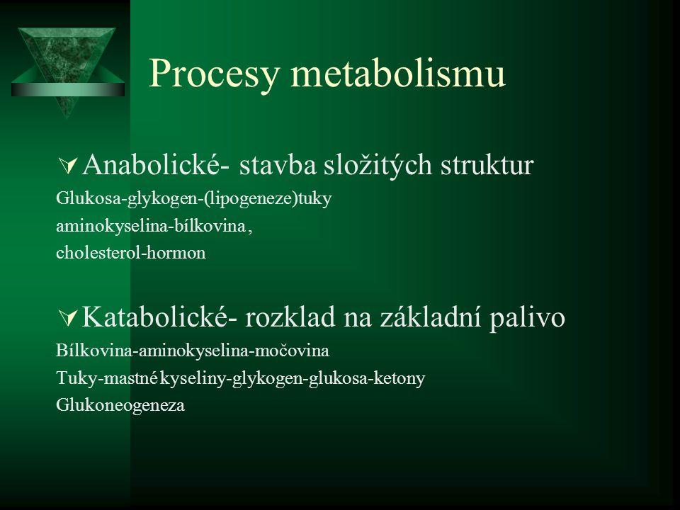Procesy metabolismu Anabolické- stavba složitých struktur