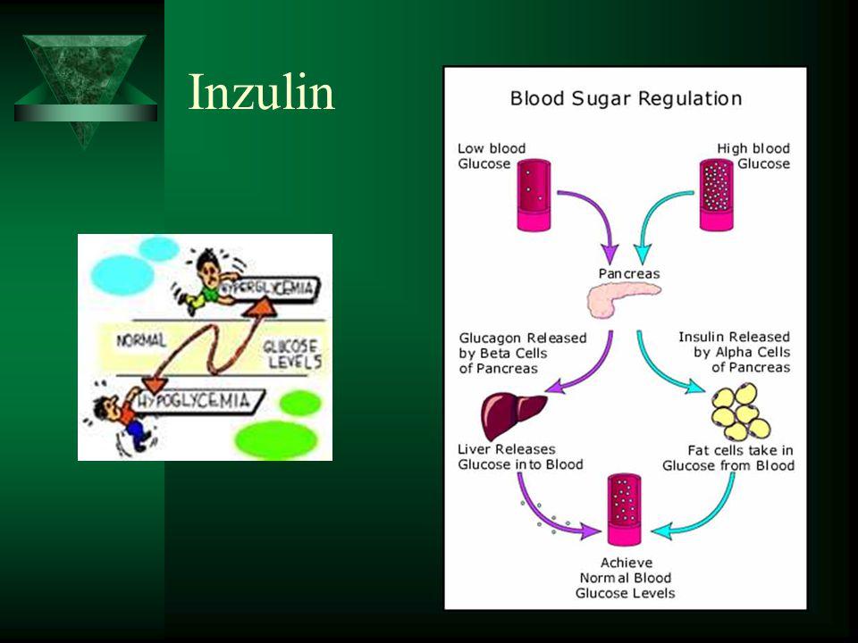 Inzulin