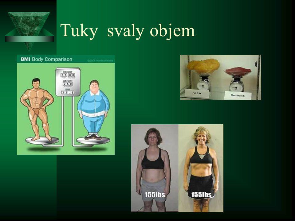Tuky svaly objem
