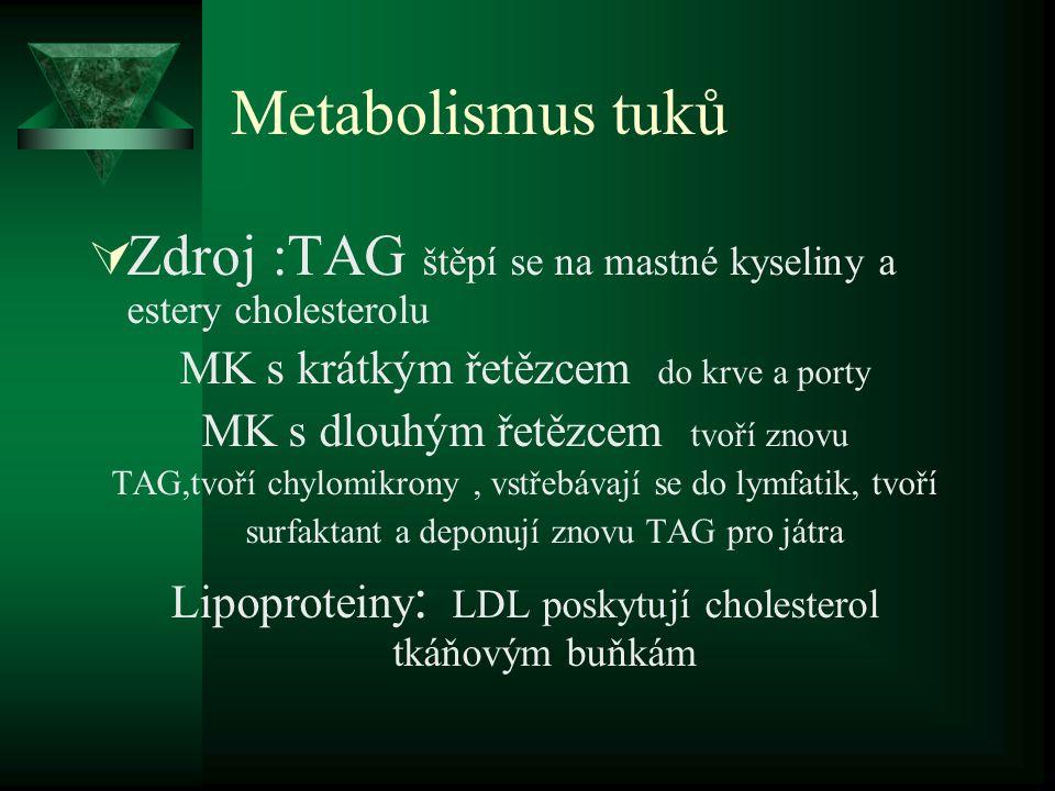 Metabolismus tuků Zdroj :TAG štěpí se na mastné kyseliny a estery cholesterolu. MK s krátkým řetězcem do krve a porty.