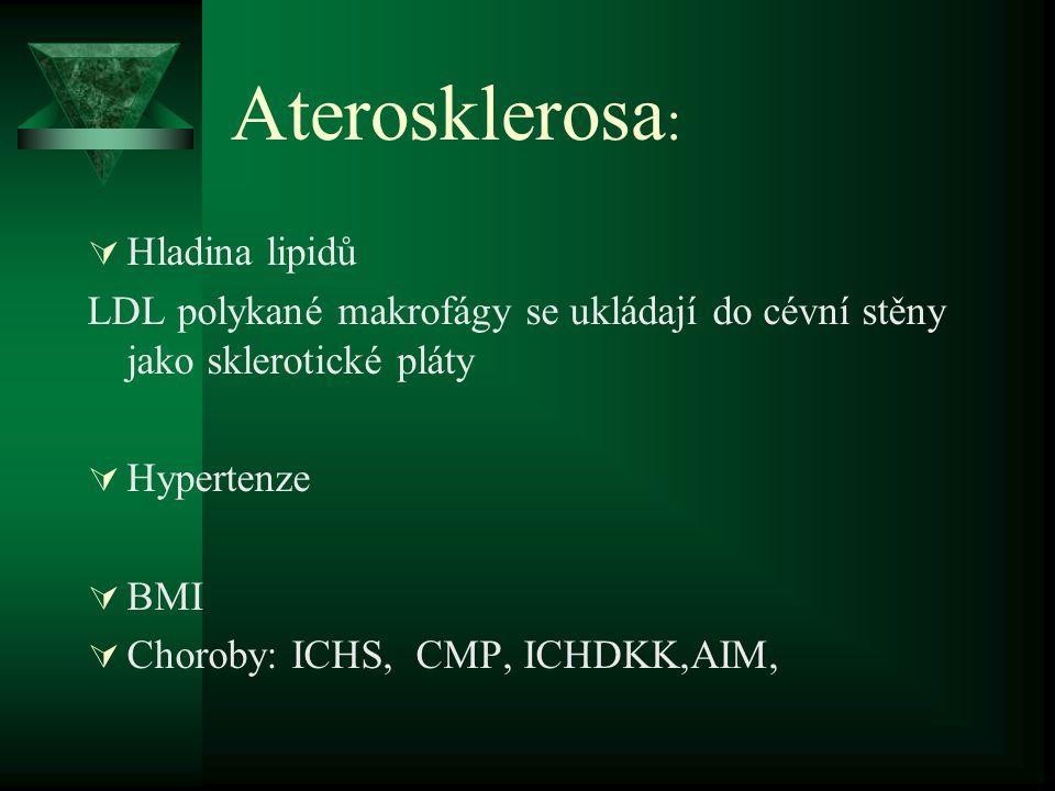 Aterosklerosa: Hladina lipidů