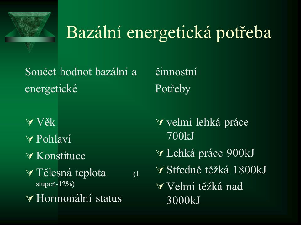 Bazální energetická potřeba