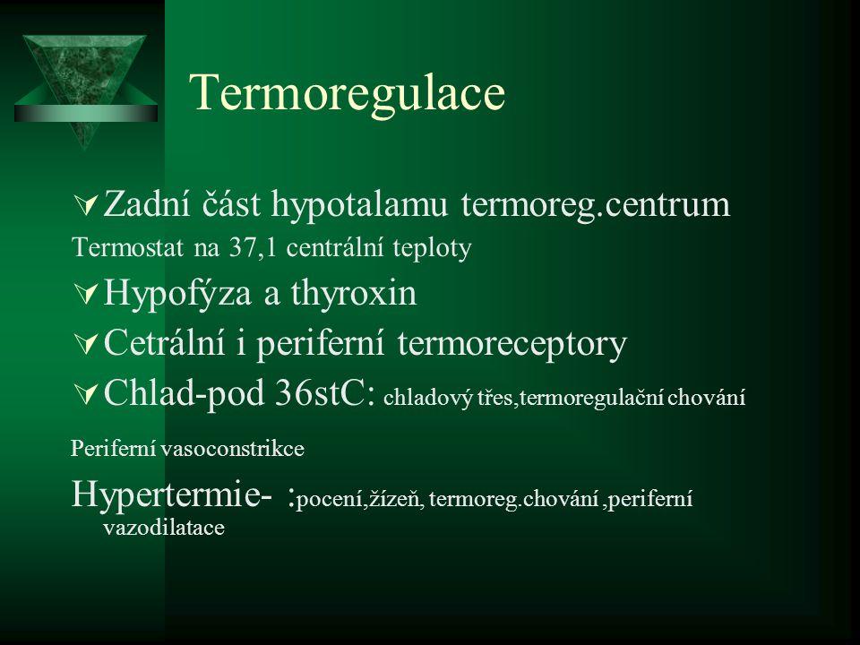 Termoregulace Zadní část hypotalamu termoreg.centrum