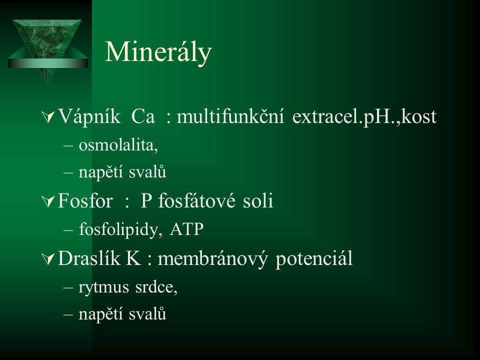 Minerály Vápník Ca : multifunkční extracel.pH.,kost
