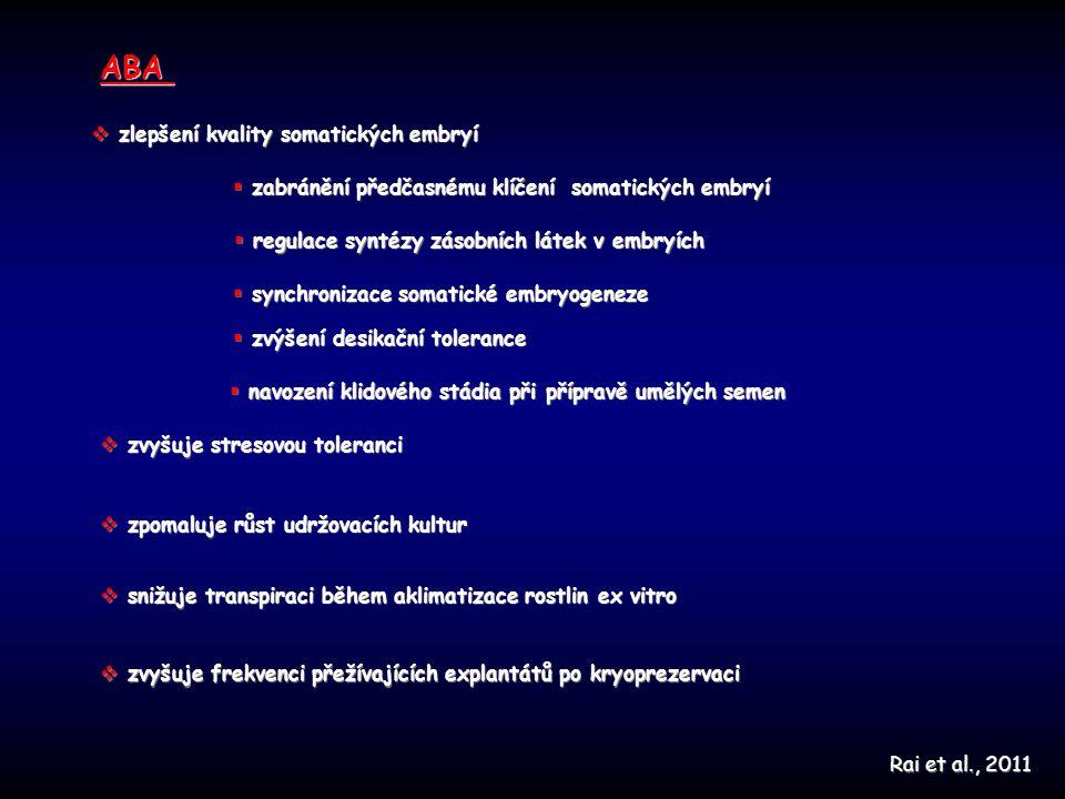 ABA zlepšení kvality somatických embryí