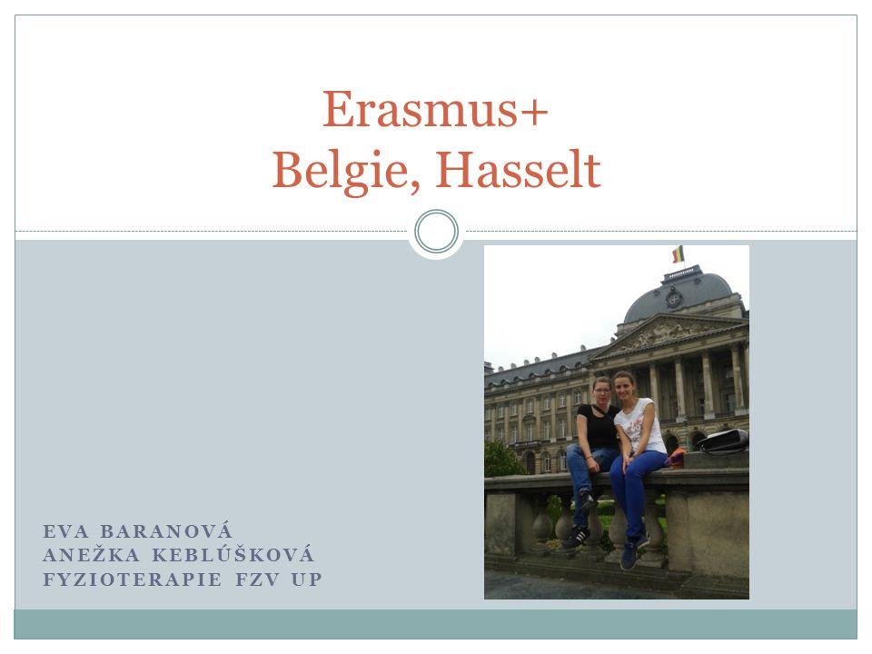 Erasmus+ Belgie, Hasselt