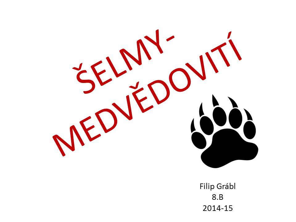 ŠELMY- MEDVĚDOVITÍ Filip Grábl 8.B 2014-15