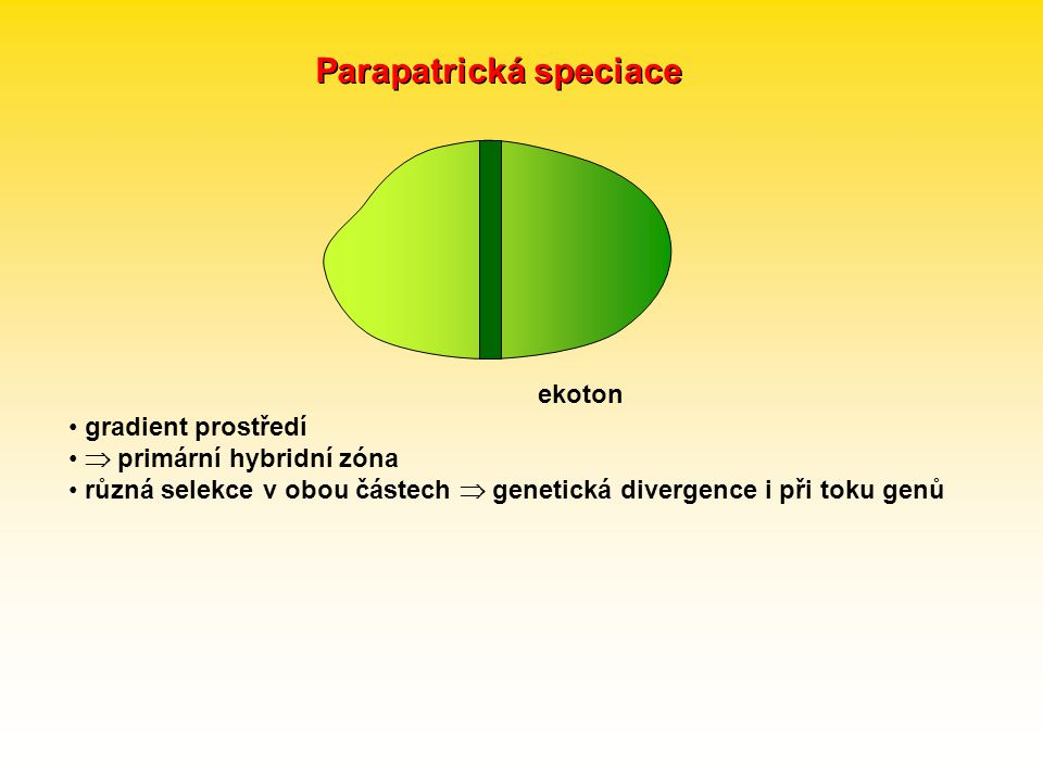 Parapatrická speciace