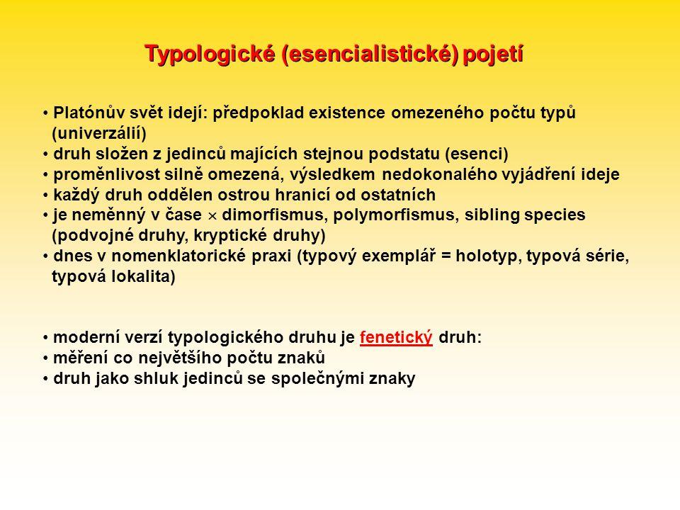 Typologické (esencialistické) pojetí