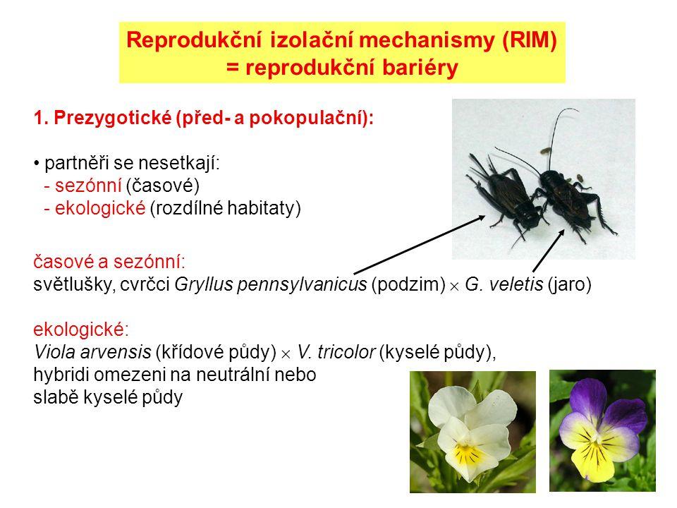 Reprodukční izolační mechanismy (RIM)