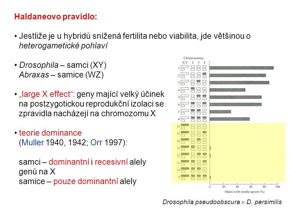 Drosophila – samci (XY) Abraxas – samice (WZ)