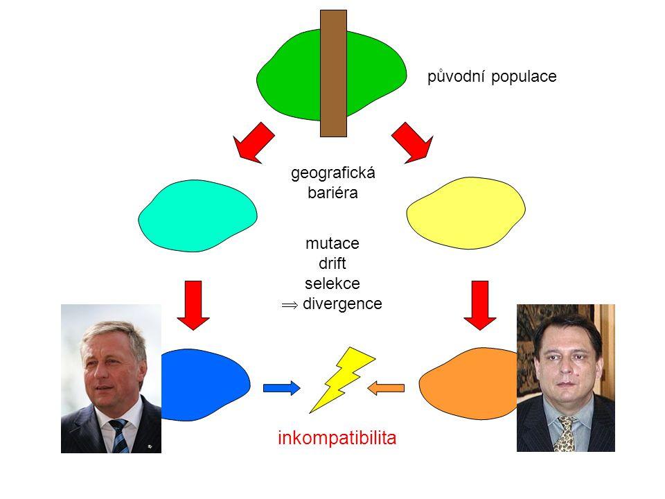 inkompatibilita původní populace geografická bariéra mutace drift