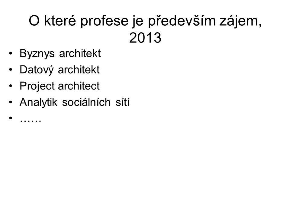 O které profese je především zájem, 2013