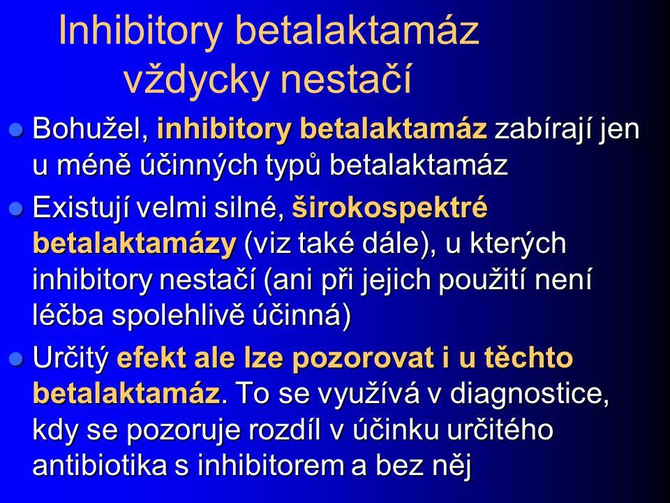Inhibitory betalaktamáz vždycky nestačí