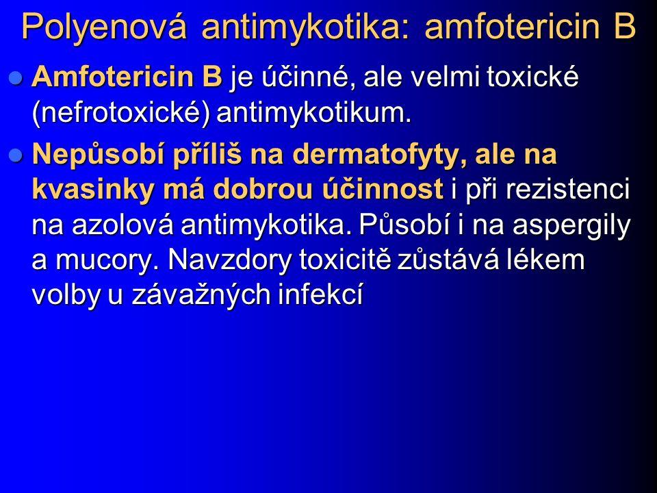 Polyenová antimykotika: amfotericin B