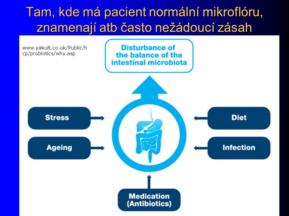 Tam, kde má pacient normální mikroflóru, znamenají atb často nežádoucí zásah