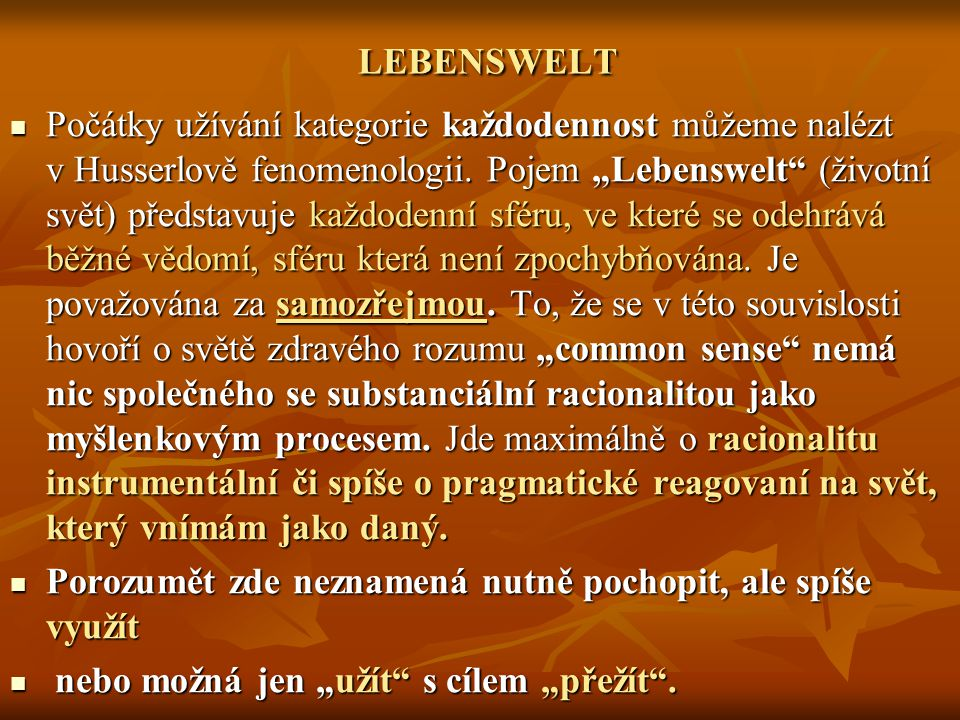 LEBENSWELT