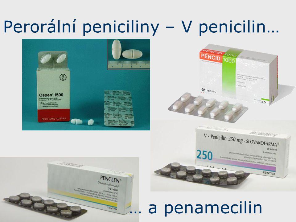 Perorální peniciliny – V penicilin…