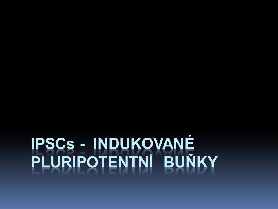 iPSCs - Indukované pluripotentní buňky