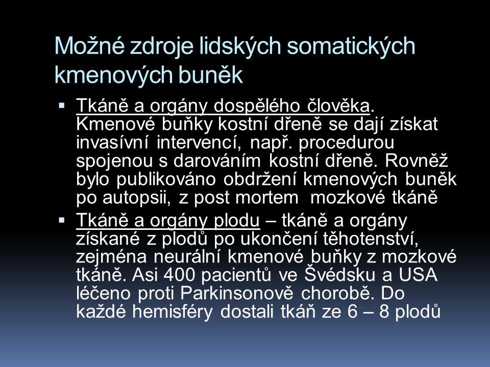 Možné zdroje lidských somatických kmenových buněk