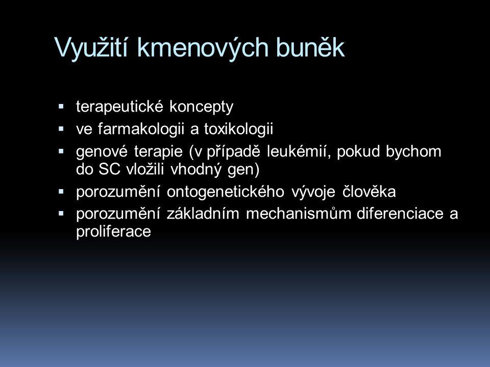 Využití kmenových buněk