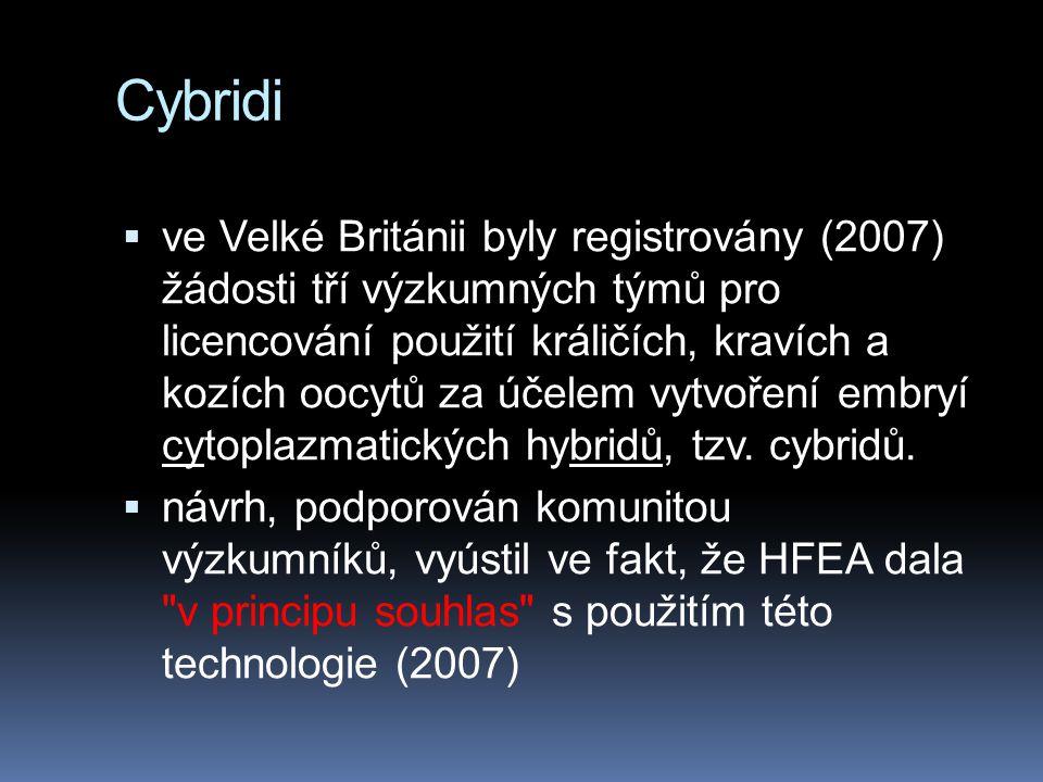 Cybridi