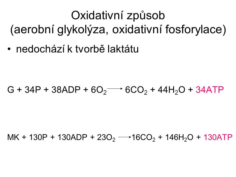 Oxidativní způsob (aerobní glykolýza, oxidativní fosforylace)