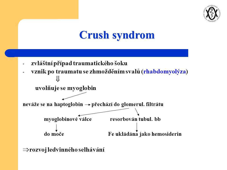 Crush syndrom zvláštní případ traumatického šoku