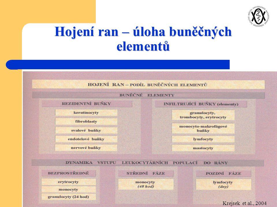 Hojení ran – úloha buněčných elementů