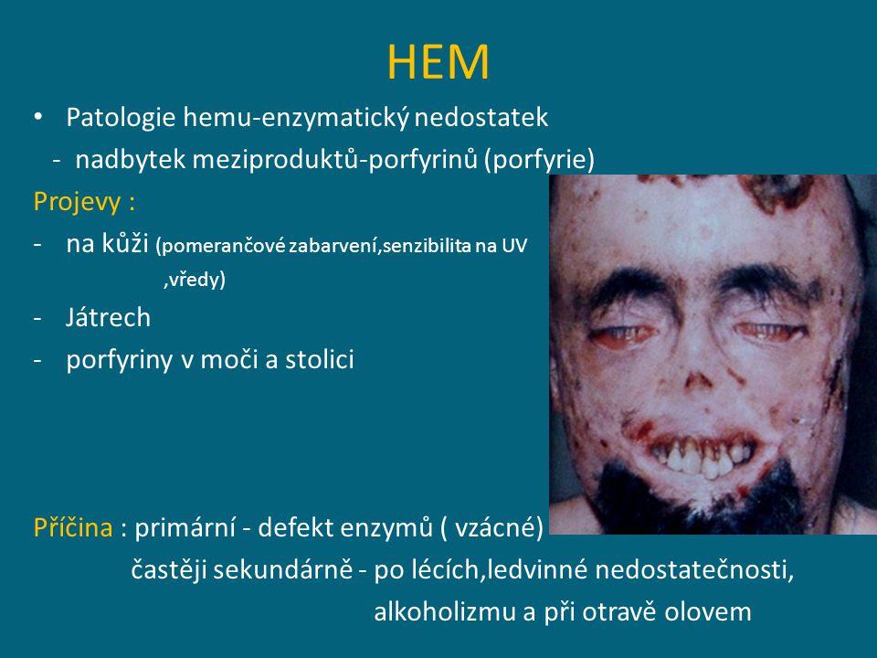 HEM Patologie hemu-enzymatický nedostatek