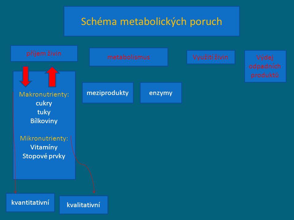 Schéma metabolických poruch